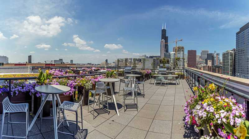 Enjoy skyline views from The Lofts at Roosevelt Collection