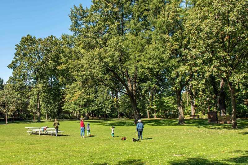Austin Gardens Park, Oak Park