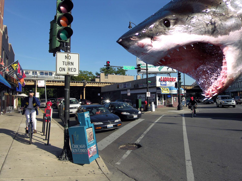 Shark bites: Three discounted condos in Wrightwood Neighbors