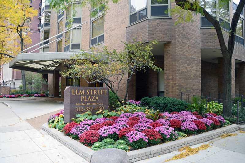 Elm Street Plaza, Chicago