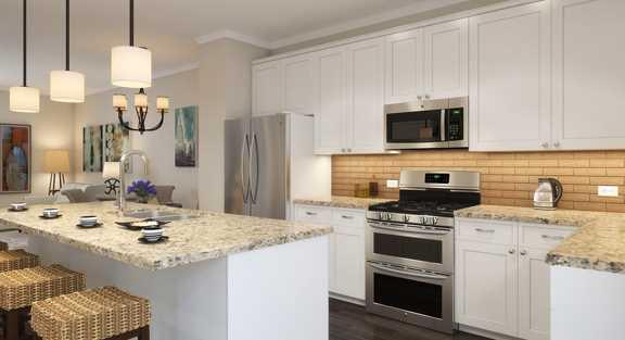 New Lexington Chase townhomes near Palatine town center