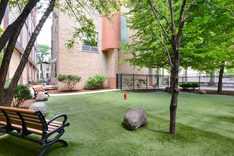 Luxury River North apartments with a private dog park at Chestnut Tower