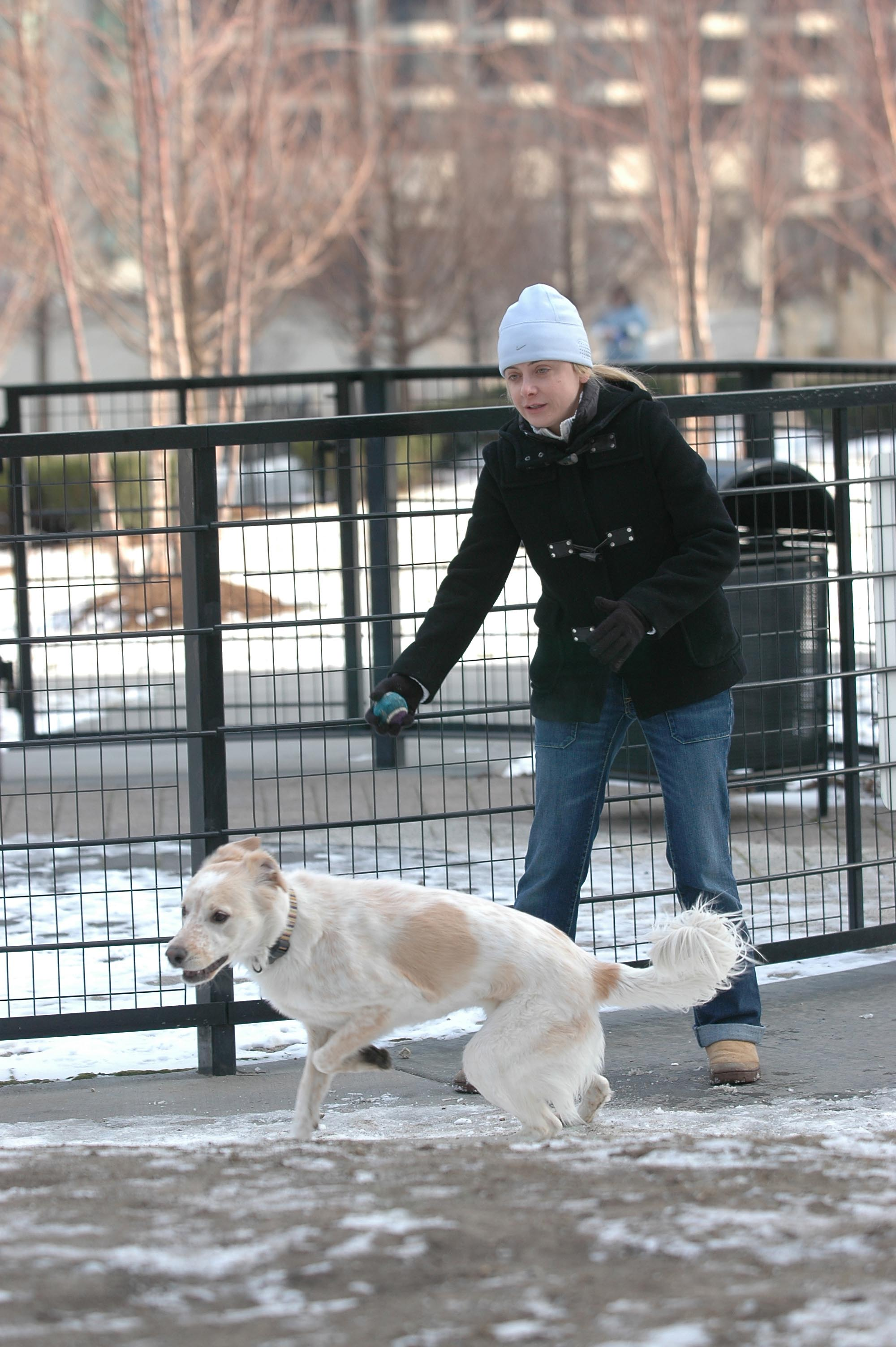 Lina Farina plays with her English Setter Meghan in the park at Lakeshore East.