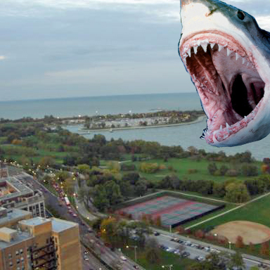 CondoShark sighted off Lake Shore Drive!