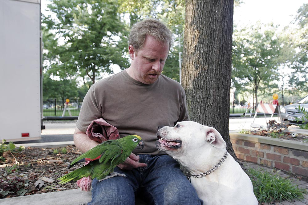 James Berner with his Amazon parrot and American bulldog outside Wicker Park.